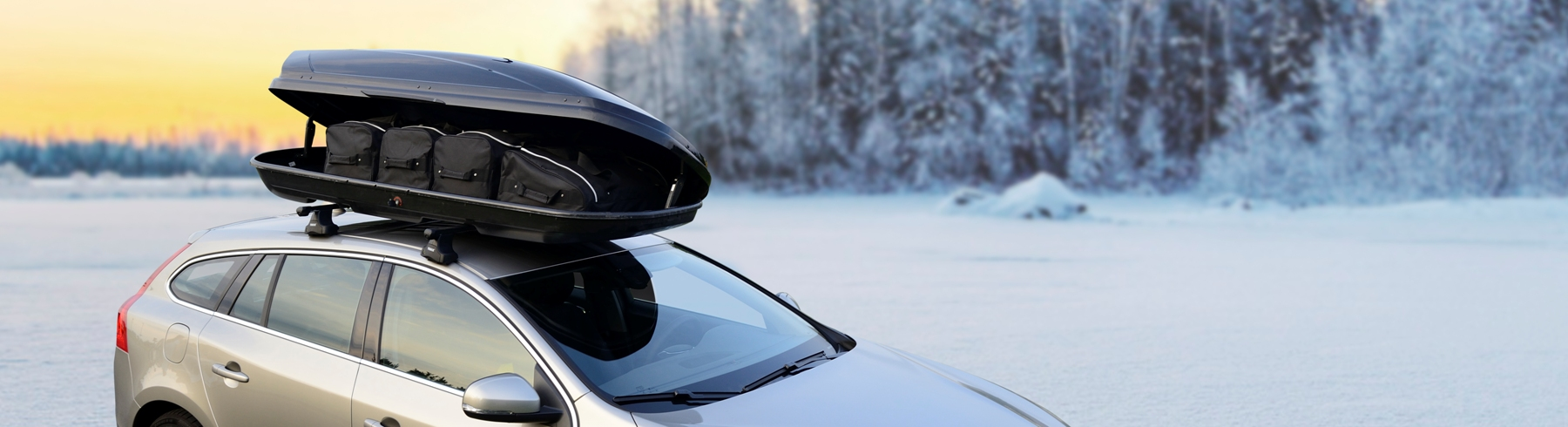car-bags-roof-box-bags-winter