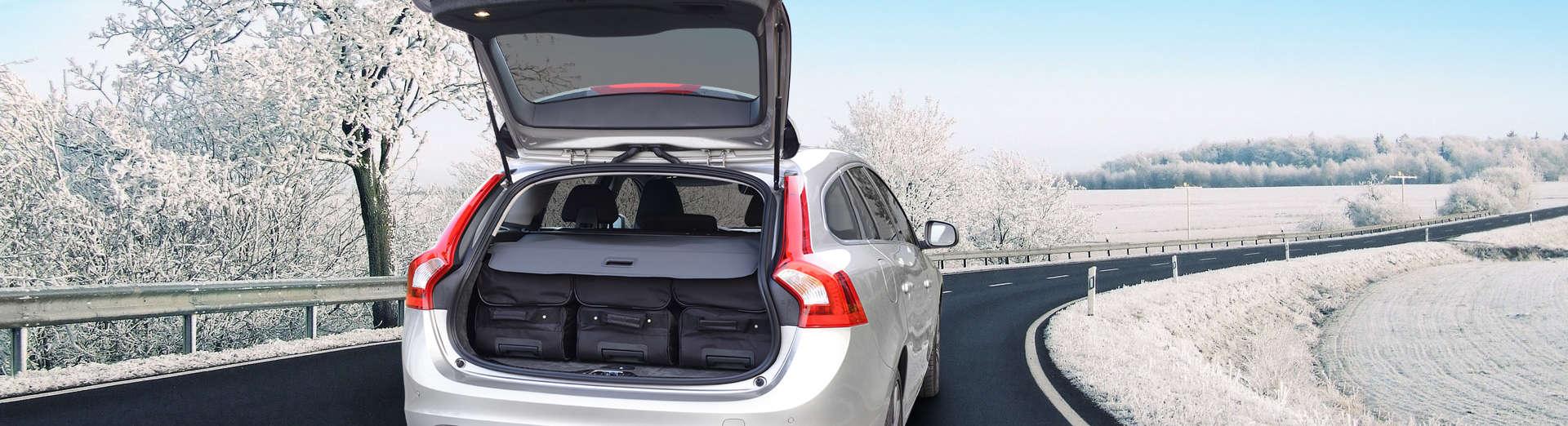 car-bags-concept-3